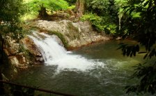 Middle stream