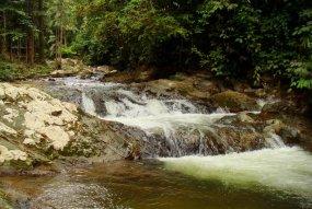 Lower stream