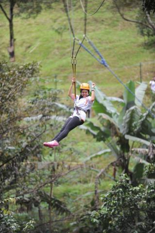 Flying fox.