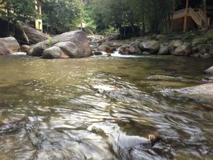 Clean water.