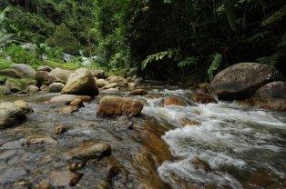Delam River