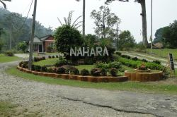 The Nahara sign.