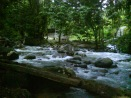 River flow.