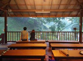 Refreshings Springs Resort