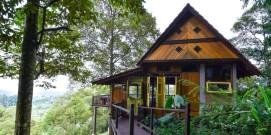 Emas House view.
