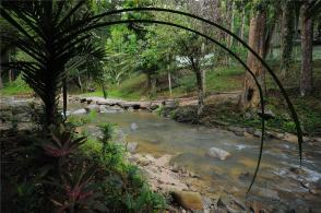 Swimming area.