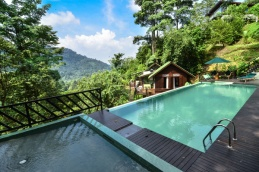 Lower Pool, the baby wading pool and the beautiful Berembun forest.