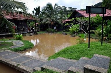 Fish pond.