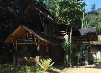 Bamboo Village KL - 7