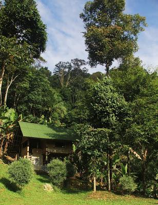 Bamboo Village KL - Eagle Nest 2