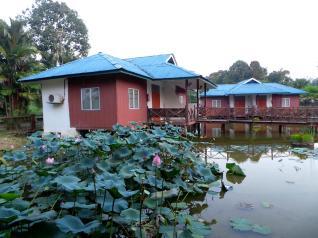 Firefly Park Resort - 19