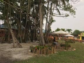 Firefly Park Resort - 6