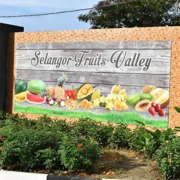 Selangor Fruits Valley - 5