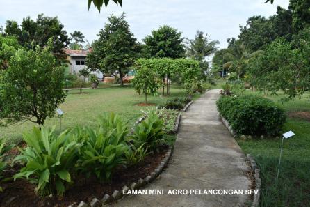 Selangor Fruits Valley - Laman 1