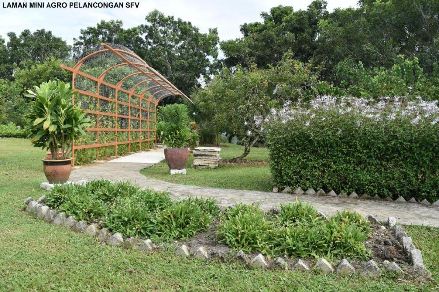 Selangor Fruits Valley - Laman 2