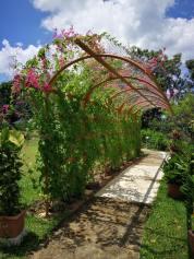 Selangor Fruits Valley - Laman 4
