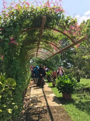 Selangor Fruits Valley - Laman 5