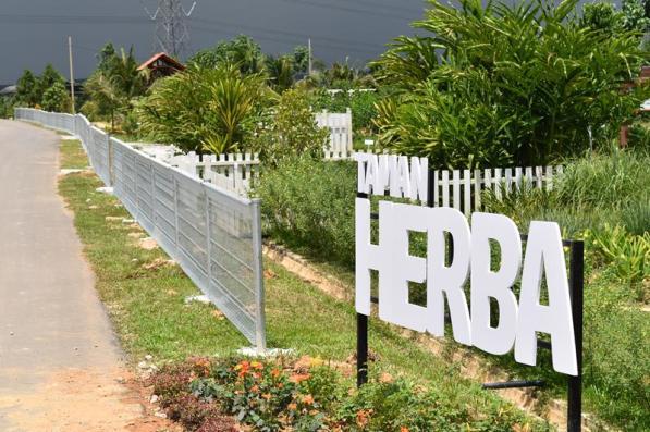 Selangor Fruits Valley - Taman Herba 1