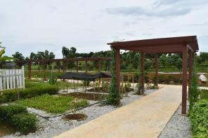 Selangor Fruits Valley - Taman Herba 5