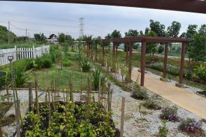 Selangor Fruits Valley - Taman Herba 7