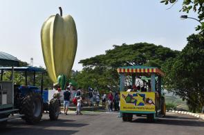 Selangor Fruits Valley - Trem 1