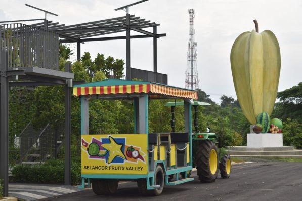 Selangor Fruits Valley - Trem 5